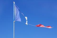 Fransk sönderriven flagga Royaltyfri Fotografi