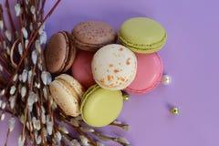 Franska färgrika macarons på härlig bakgrund Fotografering för Bildbyråer