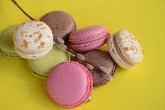 Franska färgrika macarons på härlig bakgrund Royaltyfri Fotografi