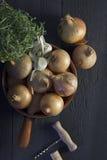 Franska löksoppaingredienser Royaltyfri Foto