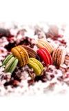 Franska macarons och filial för körsbärsröd blomning Arkivfoto