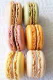 franska macaroons Royaltyfria Bilder