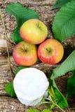 Franska ostar med äpplen Royaltyfria Bilder