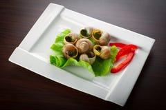 Franska snails i vitlök breder smör på på plattan Arkivbilder
