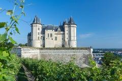 Franskan rockerar i Loiret Valley med främsta vinrankor Arkivfoton