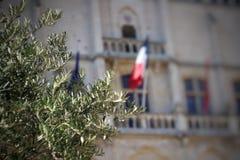 Franskan sjunker Arkivbild