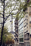 Franskaparis gata med Eiffeltorn i perspektivtroughtträd, vykortsikt Royaltyfria Foton