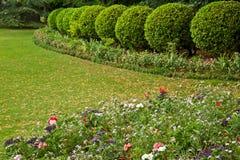 Franskaträdgård Royaltyfria Bilder