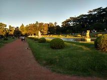 Franskaträdgård royaltyfri bild