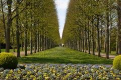 Franskaträdgård i Celle Royaltyfri Bild