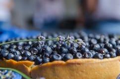 Franskt syrligt med blåbär på en stenblåttbakgrund med lavanderdekoren Närbild Royaltyfri Bild