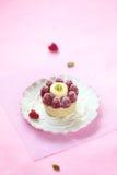 Franskt syrligt med mandelkokosnöten Frangipane, litchiplommonkräm, pistaschvaniljkräm och nya hallon royaltyfria foton