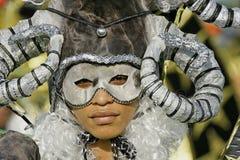 Französisch-Guayanas jährlicher Karneval 2011 lizenzfreie stockfotografie