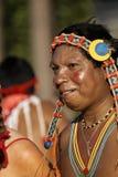 Französisch-Guayanas jährlicher Karneval 2011 lizenzfreies stockfoto