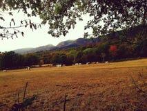 Französische Berglandschaft im Herbst stockfotografie