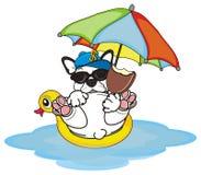 Französische Bulldogge ist auf Sommerferien lizenzfreie abbildung