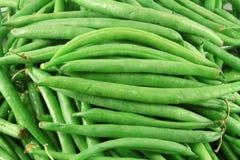 Französische grüne Bohnen Stockfotos