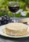 Französische Käse Sammlung, Stück gegorenes Kuhmilch-Käse Camembertau Calvados dienten mit Glas süßem rotem Portwein herein lizenzfreie stockbilder