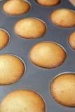 Französische Kuchen, Madeleines Lizenzfreies Stockbild