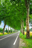 Französische Landstraße Stockfotos