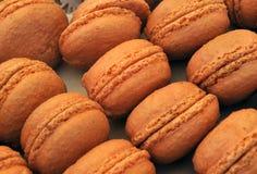Französische macarons Stockbilder