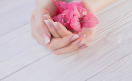 Französische Maniküre Ombre mit Blumen stockbilder