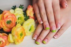 Französische Nagelkunst in der grünen Farbe Stockfotografie