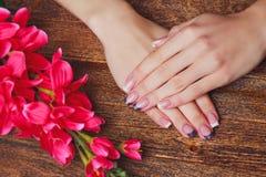 Französische Nagelkunst in der purpurroten Farbe stockbild