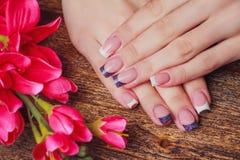 Französische Nagelkunst in der purpurroten Farbe Stockfoto
