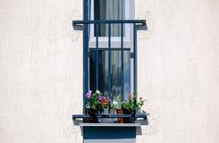 Französischer Balkon mit Blumen im weißen Haus Stockbild