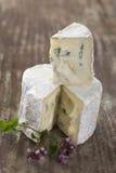 Französischer schaler Blauschimmelkäse von Auvergne Stockbild