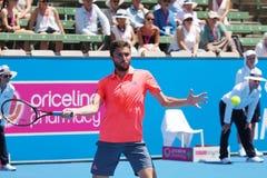 Französischer Tennisspieler Gilles Simon, der für die Australian Open beim Kooyong sich vorbereitet lizenzfreie stockfotos