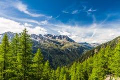 Französisches Alpen-Tal unter Mt. Blanc mit Mer de Glace - Meer des Eis-Gletschers Lizenzfreies Stockfoto