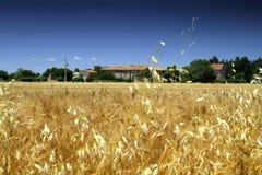 Französisches Bauernhofhaus lizenzfreie stockfotografie