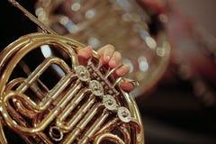 Französisches Horn Stockbilder
