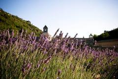 Französisches Kloster und Felder des Lavendels Stockfotos