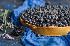 Französisches Törtchen des Sommers mit Blaubeeren auf einem blauen Hintergrund Nahaufnahme Lizenzfreie Stockfotos