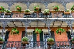 Französisches Viertel-Balkone mit Anlagen in New Orleans Stockbilder