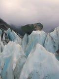 franz glaciär joseph Arkivbilder