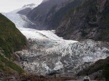 franz glaciär joseph New Zealand arkivfoto