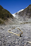 Franz Josef Glacier Royalty Free Stock Photo