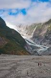 Franz Josef Glacier i den Westland nationalparken royaltyfria bilder