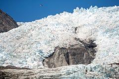 Franz Josef Glacier, New Zealand Stock Images