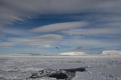 Franz-Josef Land landscape. Travel on icebreaker Arctic 2018 stock photo