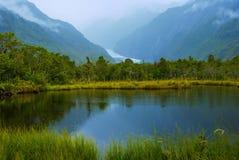 Franz Josefs Glacier Imagem de Stock Royalty Free
