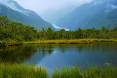 Franz Josefs Glacier Royalty Free Stock Image