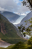 Franz Joseph glaciär Royaltyfria Bilder