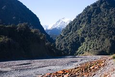 Franz Joseph Glacier C Royalty Free Stock Images