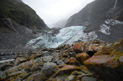 Franz Joseph Glacier Stock Photography