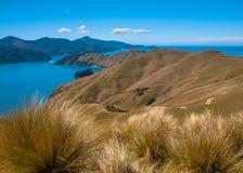 Franzose-Durchlauf an Marlborough-Tönen, Südinsel, Neuseeland Lizenzfreie Stockfotografie
